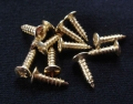Pickguard screws (12 pieces / package), gold